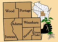 CWIP_Area_with_hand_website_edited.jpg