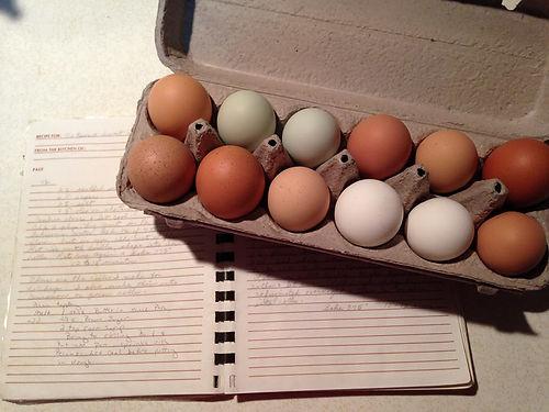 Eggs and recipe book.jpg