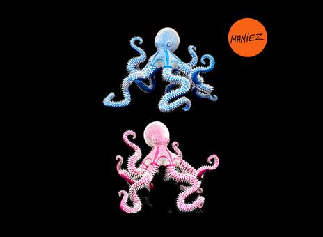 Le poulpe rose et bleu ciel d'Eddy Maniez - Eddy Maniez's pink and sky blue octopus