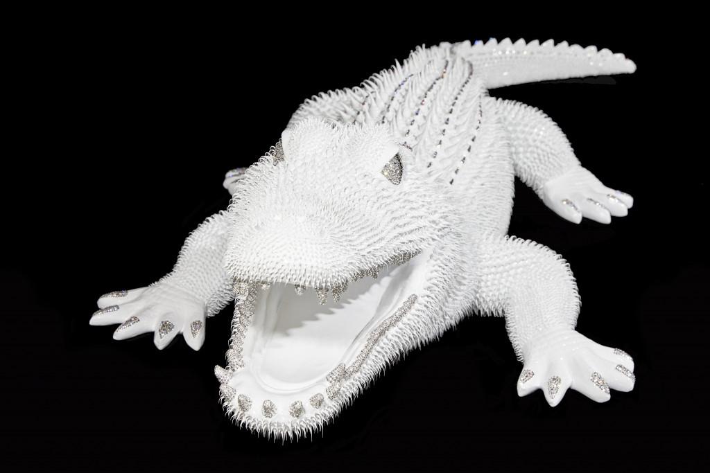 Crocodile Blanc
