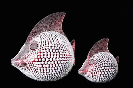 Candy Red Moon Fish