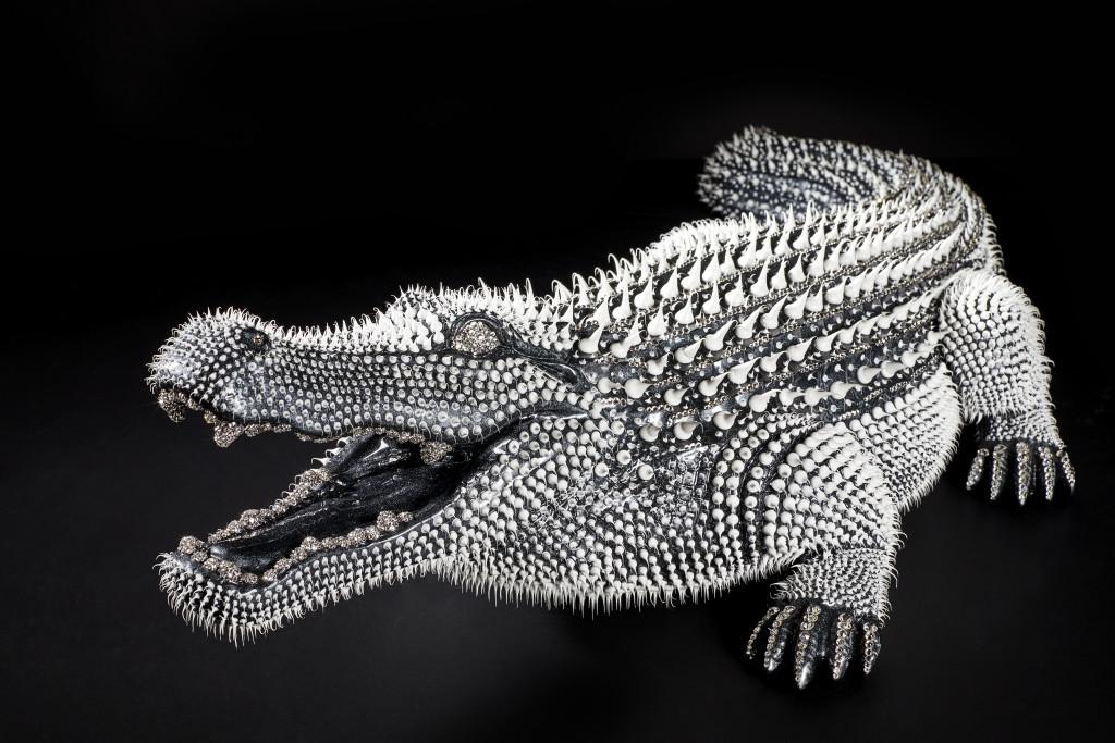 Crocodile Noir 2