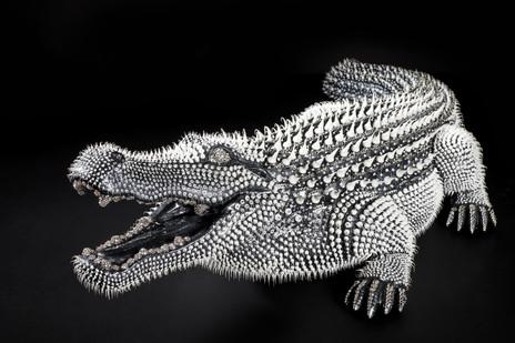Crocodile Noir