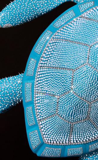 Tortue Bleue Turquoise 50cm (4)