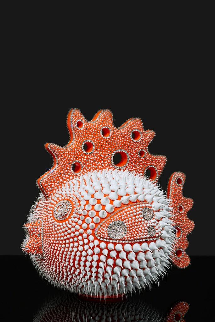 Coral orange hen fish