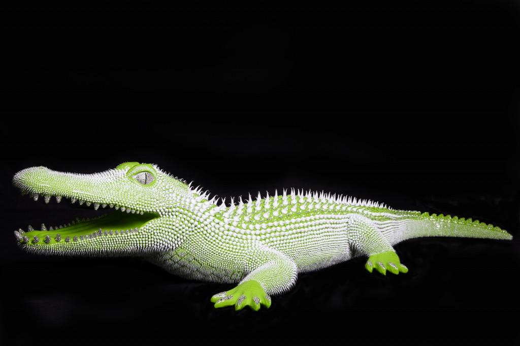 Crocodile Vert 1