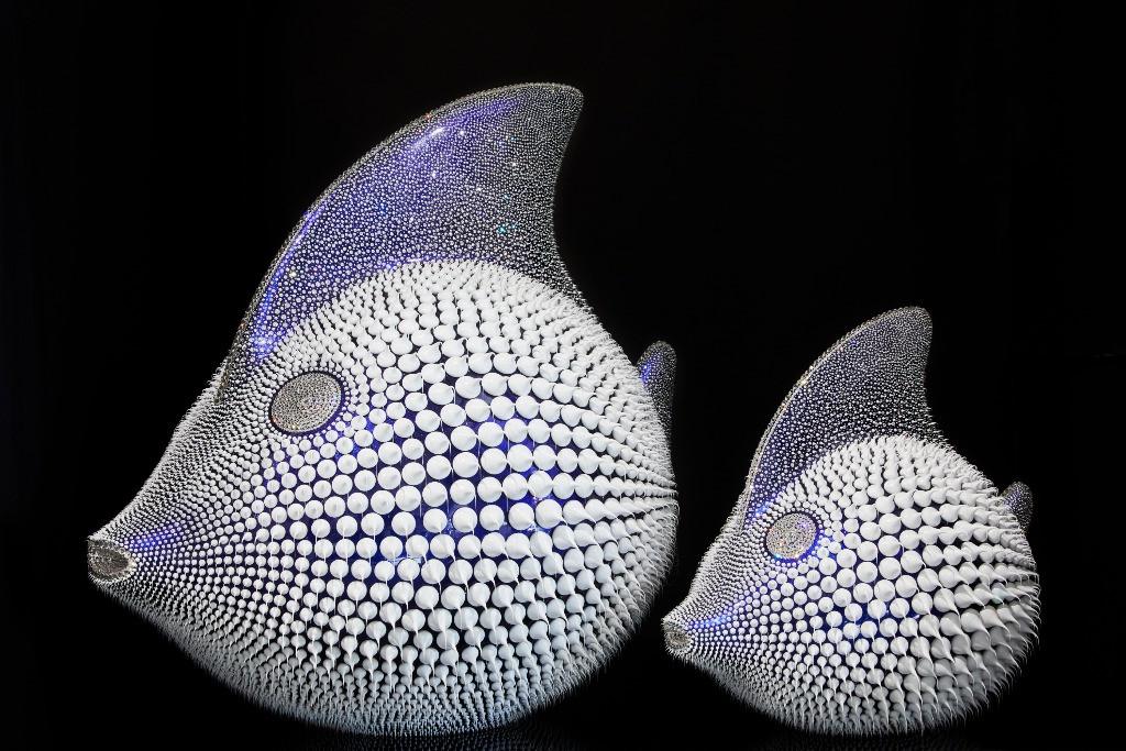 Poisson Lune Bleu Caméléon Trio