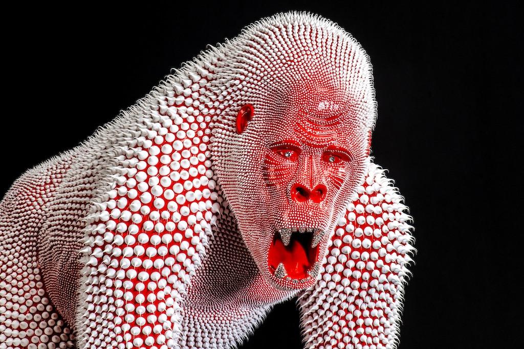 Gorille Rouge