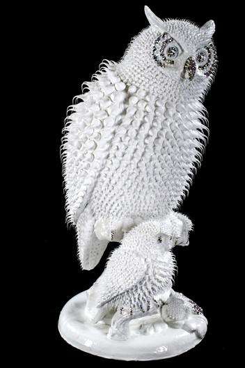 Hibou Blanc