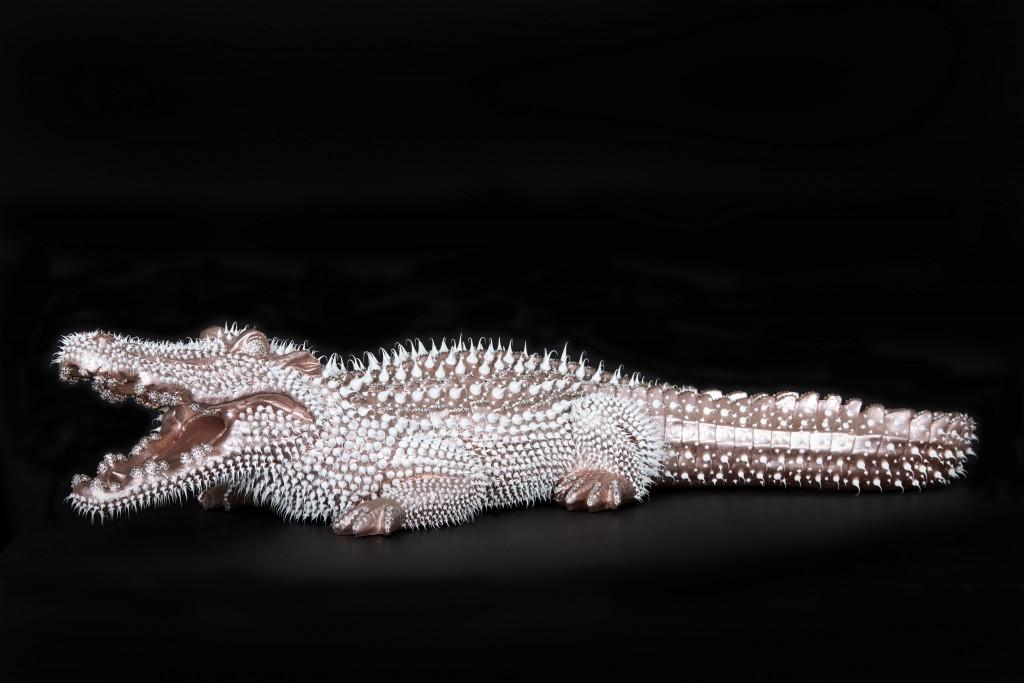Crocodile Rose Nacré