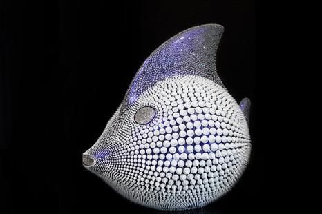 Blue chameleon moon fish