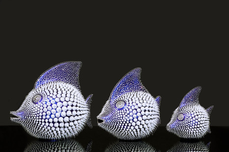 Blue Chameleon Moonfish