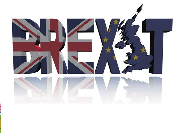 Brexit Uncertainty, Volatility, Risk
