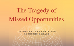 Tragedy of Missed Opportunities: COVID-19 Costs/Damages