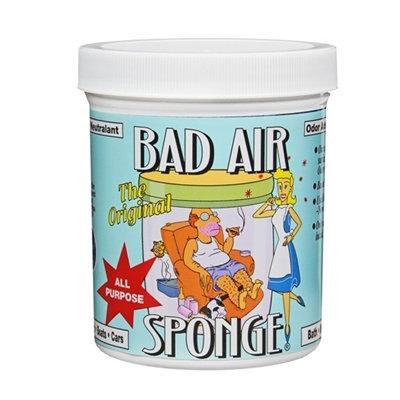 Bad Air Sponge 強力除甲醛 環保空氣淨化劑 400g