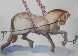 Circus Horse Galloping I