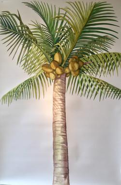 Tanta, Palm Sunday II