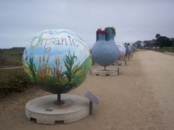 Cool Globes:  Sustainable Farming