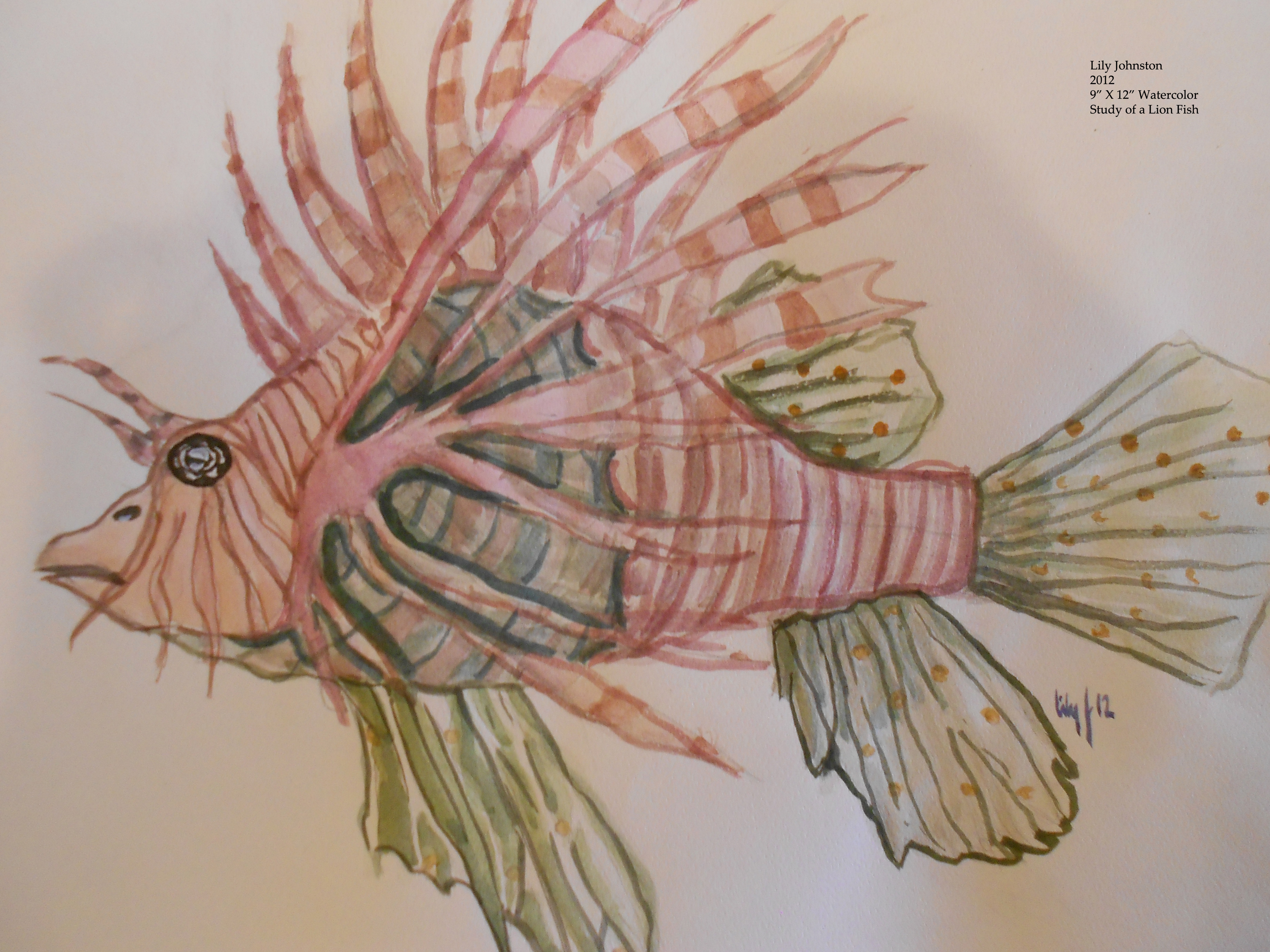 Lily's Lion Fish