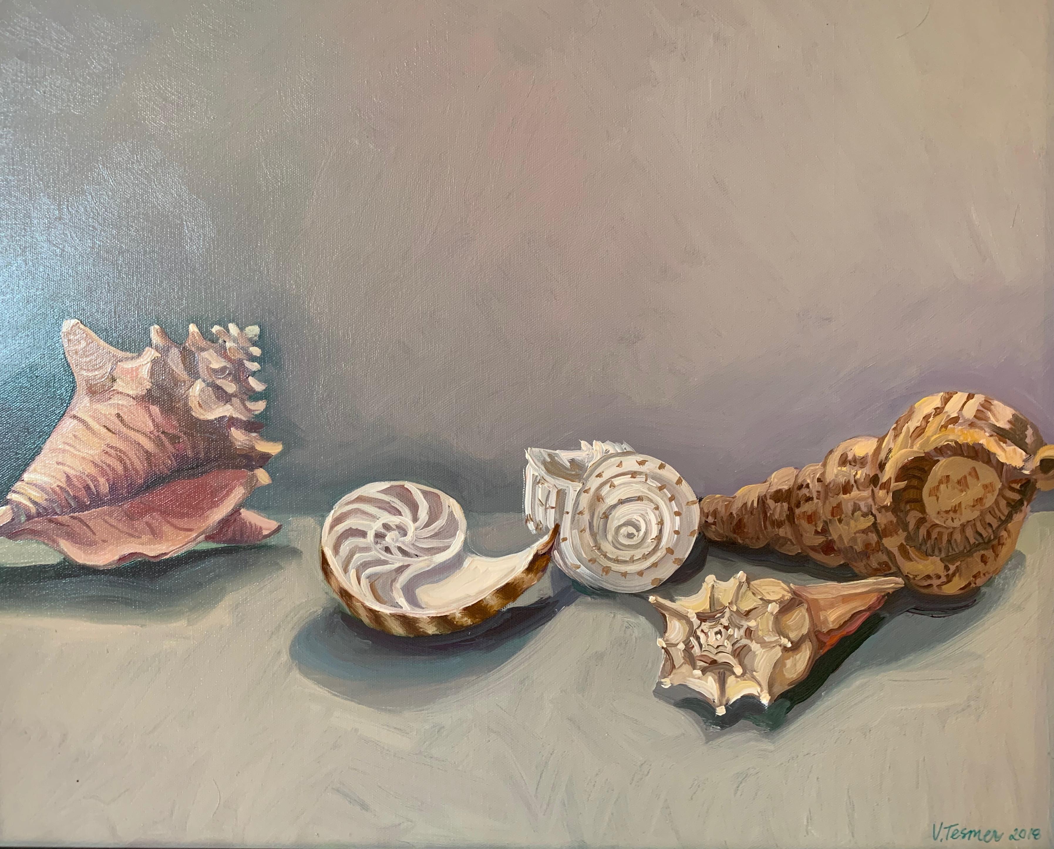 Five Shells