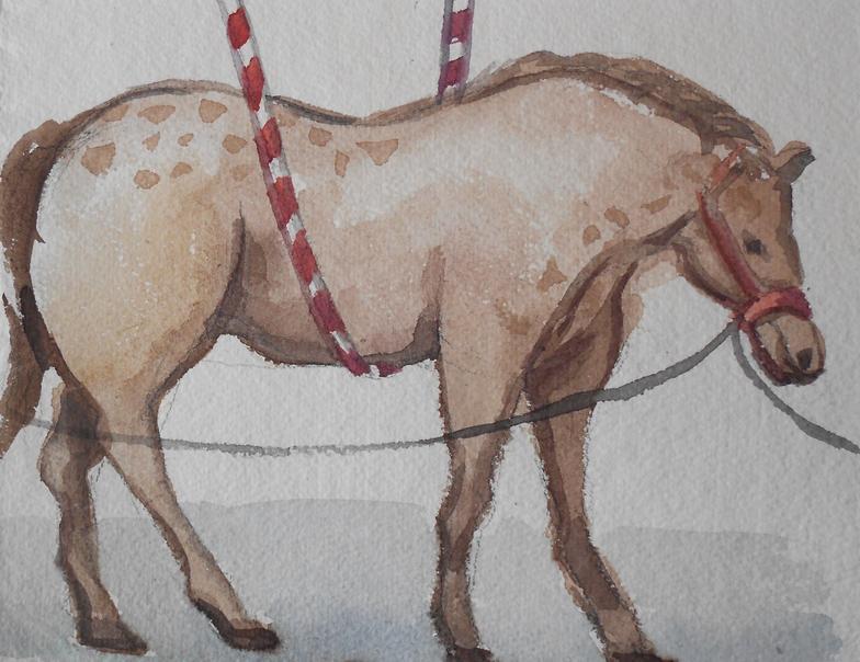Circus Horse I
