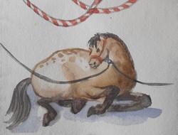 Reclining Circus Horse
