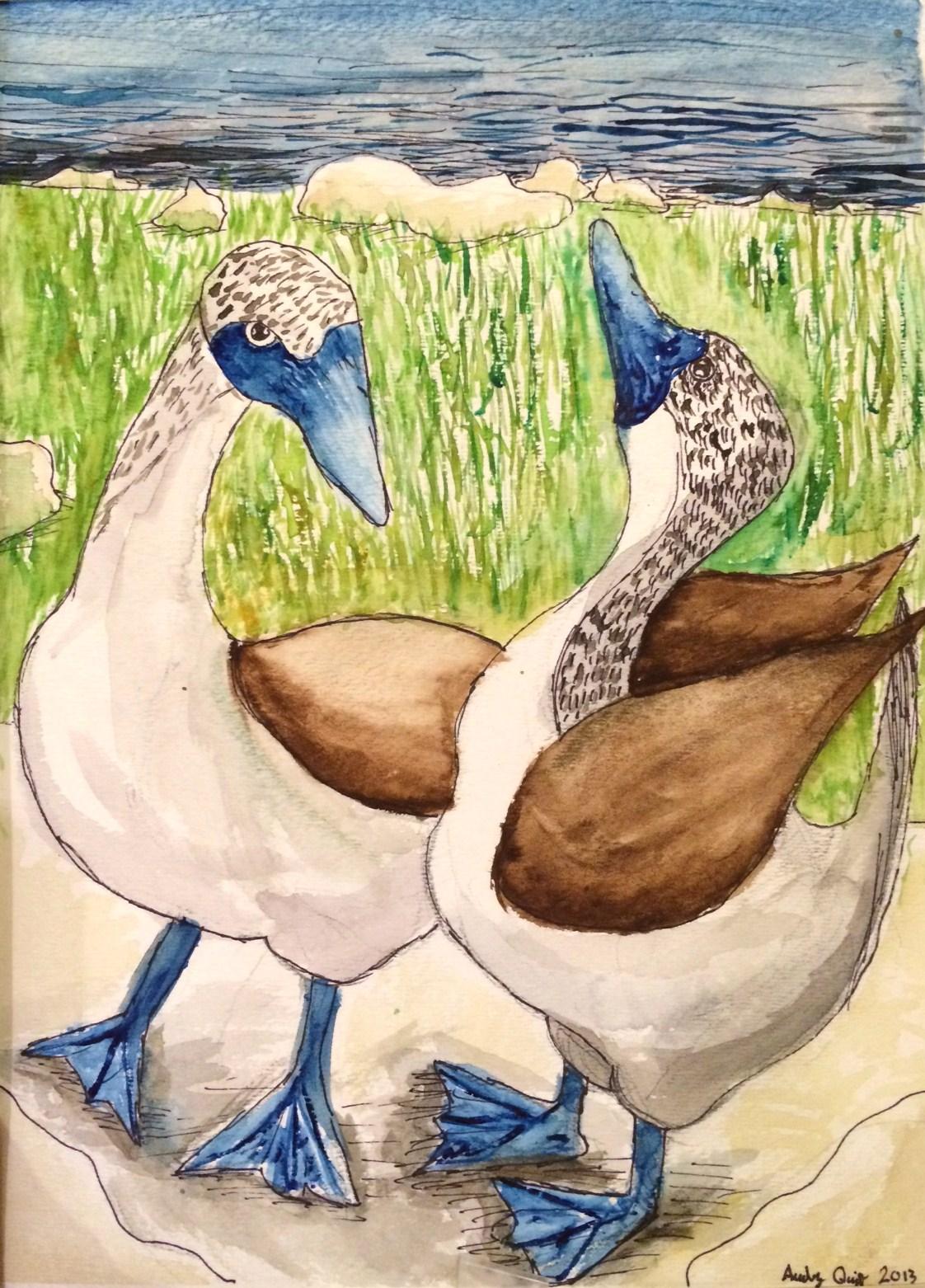 Audrey's ducks