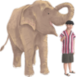 rudee i slon.png