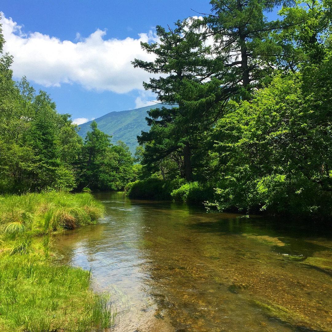 Start to Fly fishing in Nikko