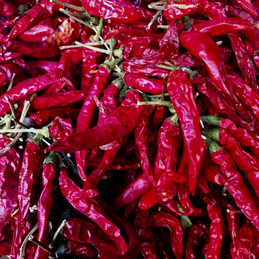 Dried Chilis in Spain