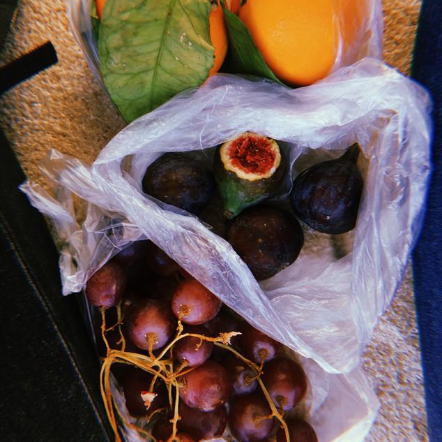 Fresh Fruit from Spanish Market