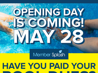 Have You Paid Your Pool Dues?