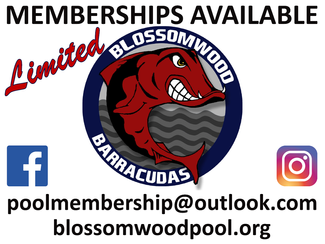 Accepting New Members - Limited