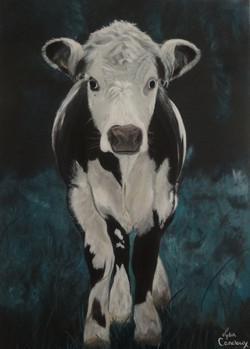 Katlijn la vache