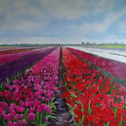 Le champ des fleurs en Hollande - huile