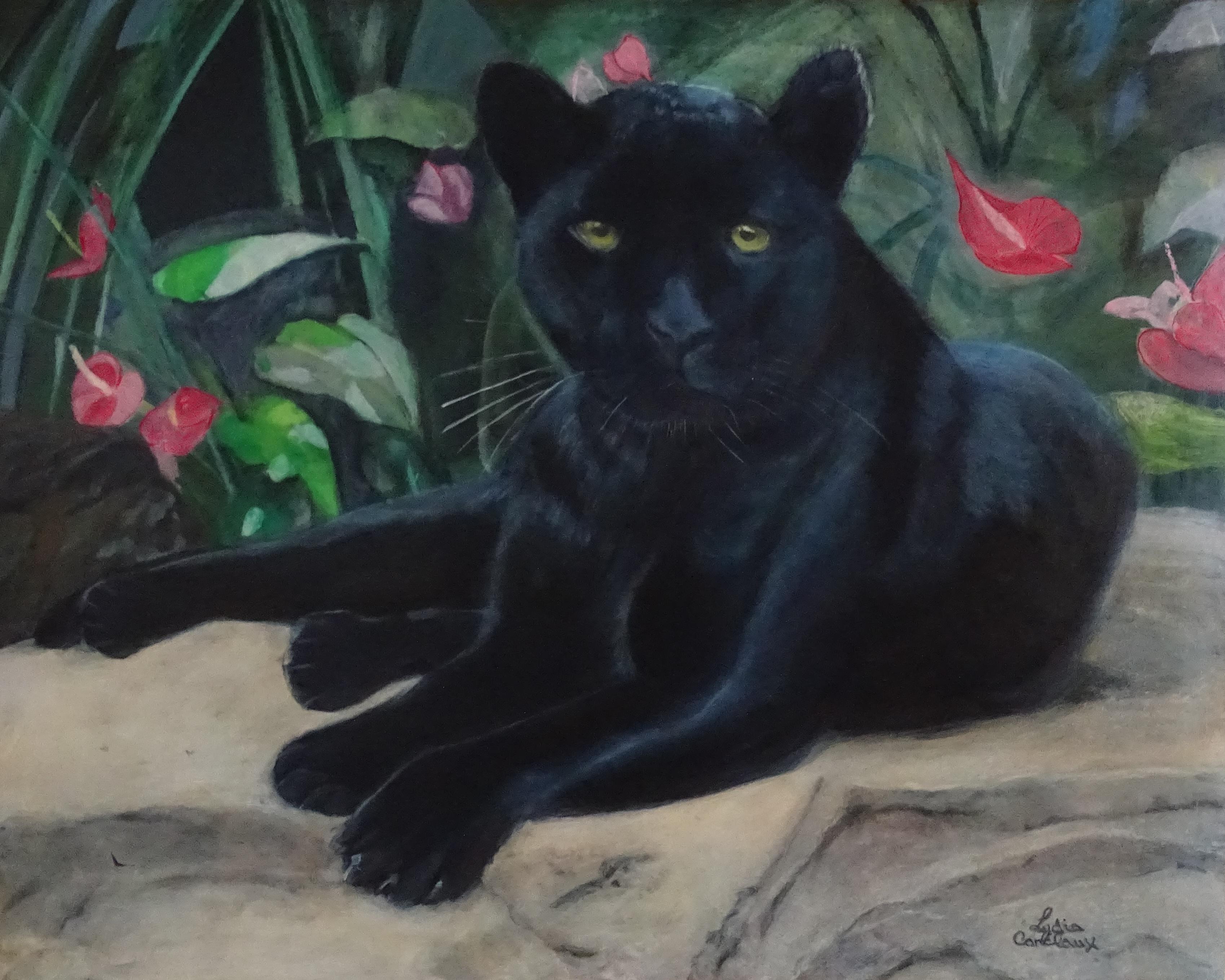 Puma noir - 50 x 40 cm - huile sur panne