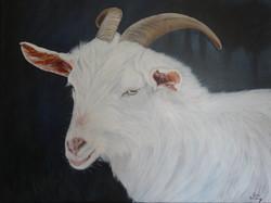 La chèvre de Mr. Seguin