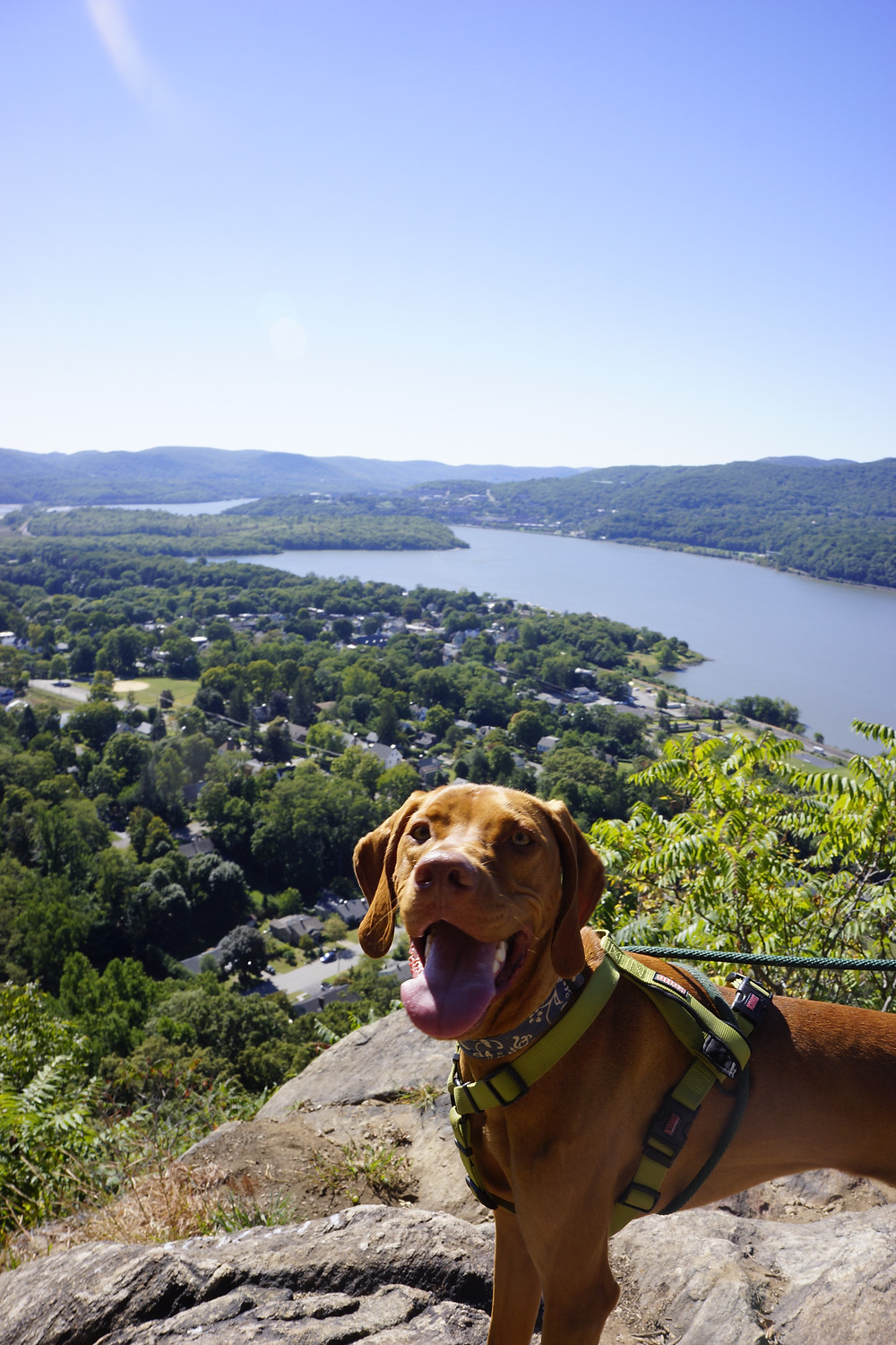 Hiking with Jake and Julia near Cold Spring, NY