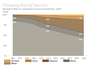 Changing Demographics of America
