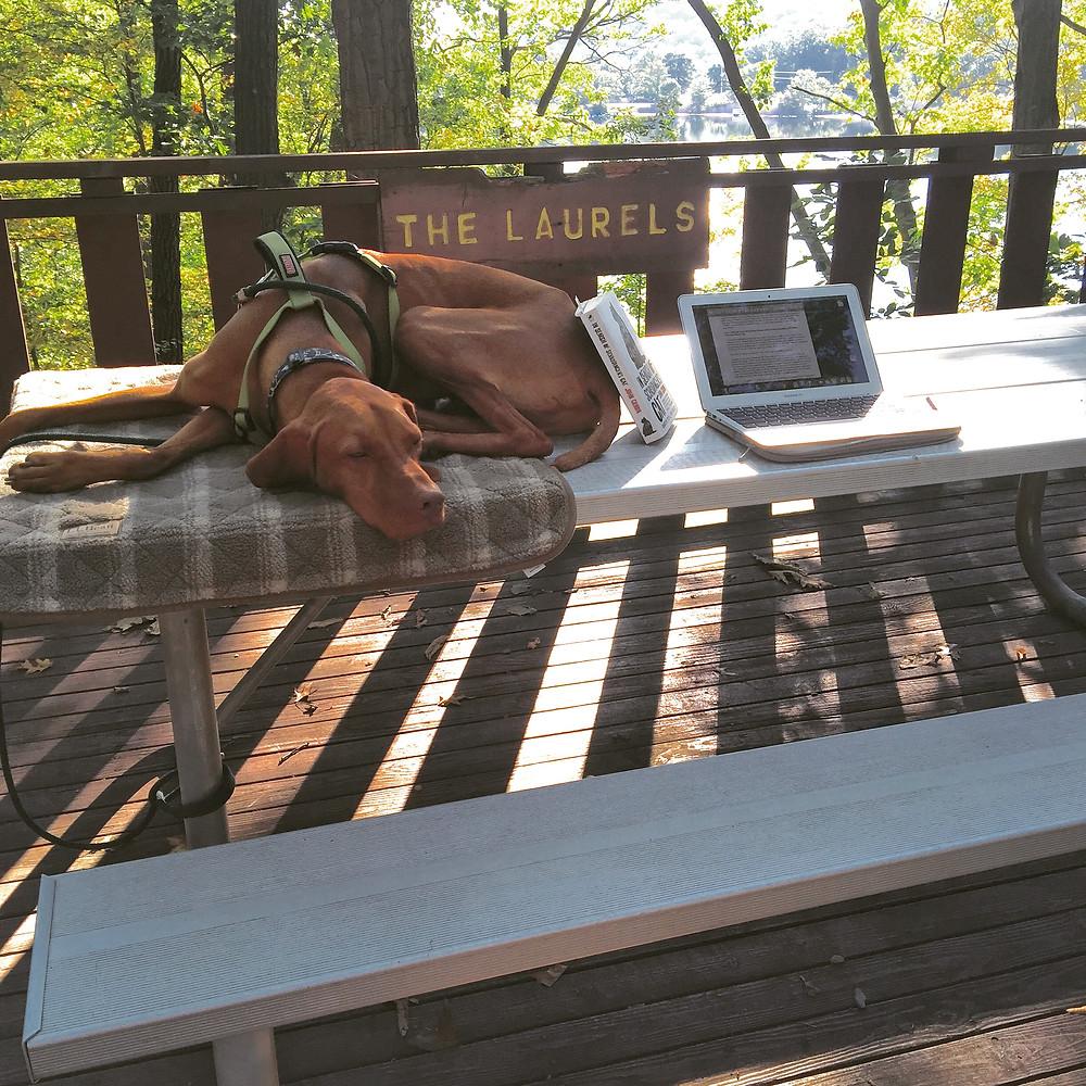 West Point campsite