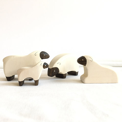 Brin d'Ours - Black-White Sheep Family