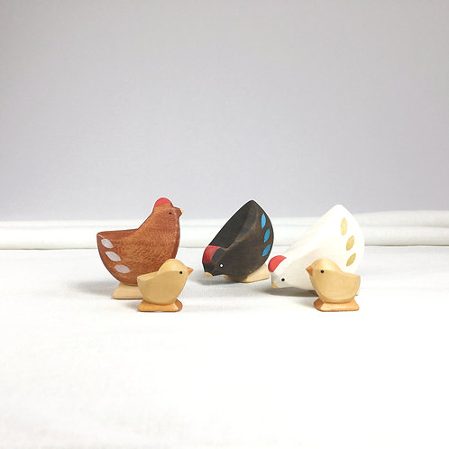 Brin d'Ours - Chicken Family4
