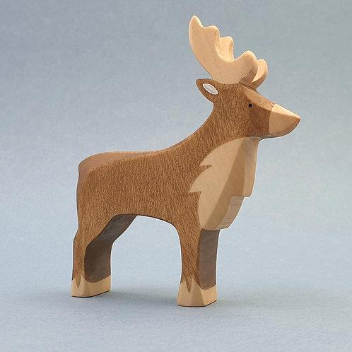Brin d'Ours - Reindeer