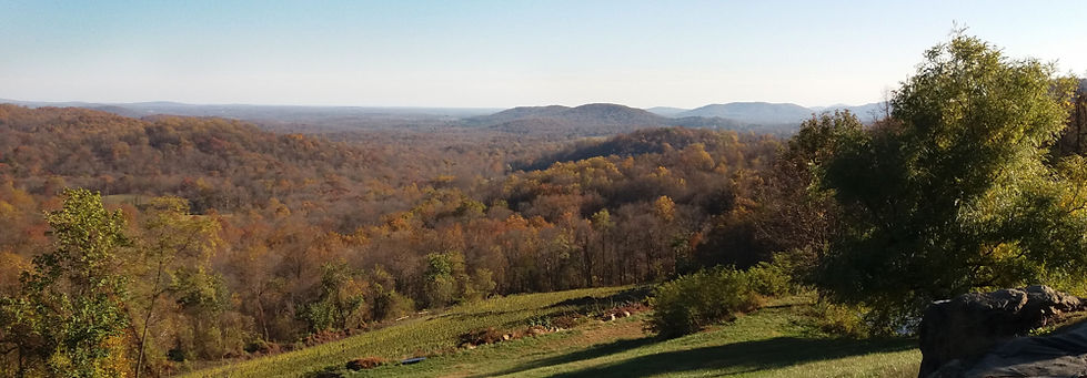 View to SE from Chester Gap Cellars_1436