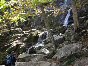 NEWS: : Shenandoah National Park Increases Recreational Access in Stages