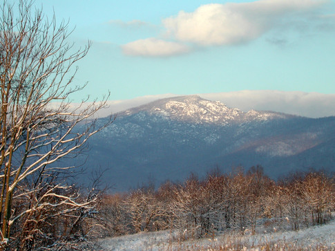 1-Old Rag from Meadow Green-e-WIB.jpg
