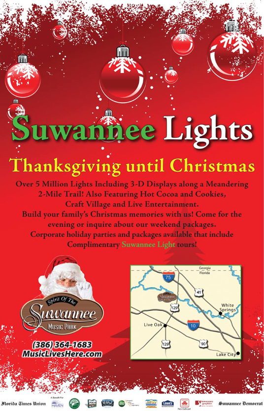 Suwannee Lights Poster