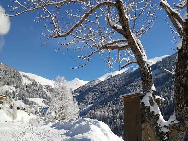 Hoferbauer_Winter1.jpg