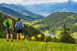 Wandern_NLW©Kärnten_Werbung_Peter-Maier-