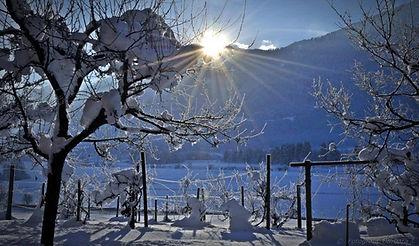 Enzianbrenner Winter.jpg